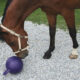 KERBL馬用おもちゃボール